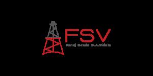 logo fsv - fppg